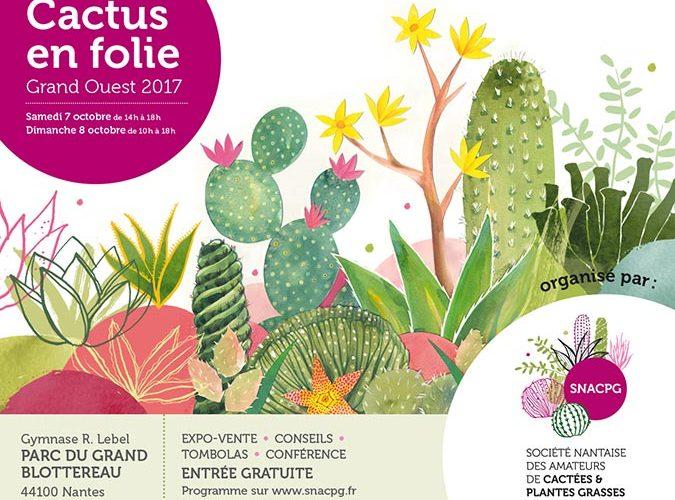 Cactus en Folie à Nantes
